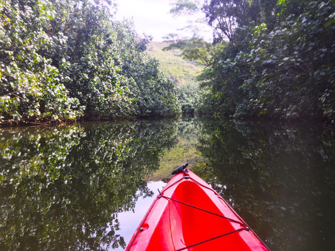 Kayak Kauai, Kayak Adventures, Hawaii